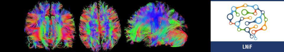 Laboratori di neuroimmagine (LNiF)